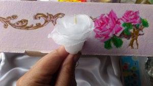 роза на фоне роз